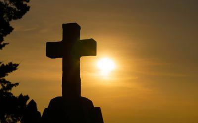 Ježišova vôľa (Mt 14, 13-21)